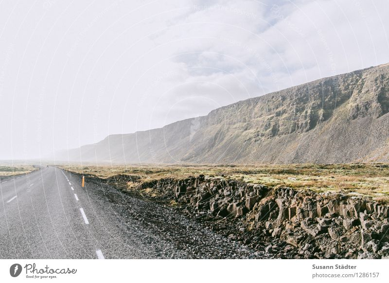 long distance Nature Loneliness Deserted Iceland Rock Carpet of moss Moss Road ditch cross section Street Car-free Exterior shot