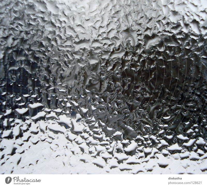 Water House (Residential Structure) Winter Window Cold Warmth Autumn Snow Background picture Rain Waves Perspective Drops of water Wet Physics Window pane