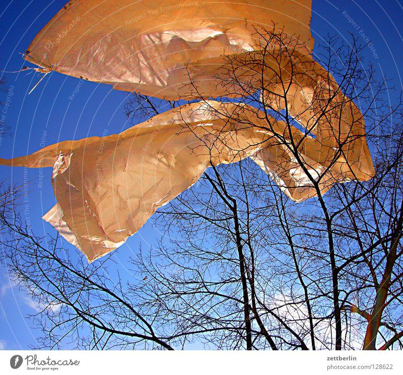 spring Flag Spring Covers (Construction) Tarp Gale Judder Waves Sky blue Tree Joy Decoration String blue ribbon spring sacrifice Wind Blow Movement Dynamics
