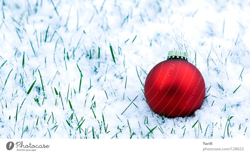 Easter? Grass Blade of grass Glitter Ball Christmas tree decorations Glass ball Red Round Meadow White Winter Christmas & Advent Snow Sphere Dull Floor covering