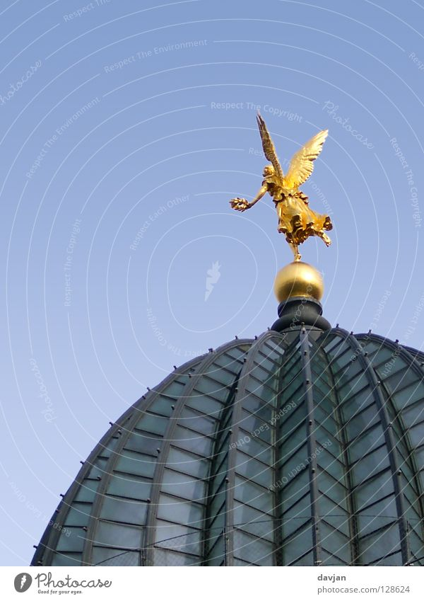 Angels fly! Domed roof Dresden Saxony Academic studies Building Roof Glass roof Historic Landmark Monument Flying art academy Gold Wing Freedom fly away