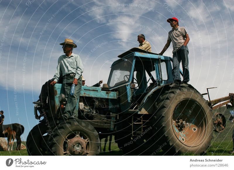 Nature 3 Vantage point Agriculture Farmer Tractor Work and employment Working in the fields