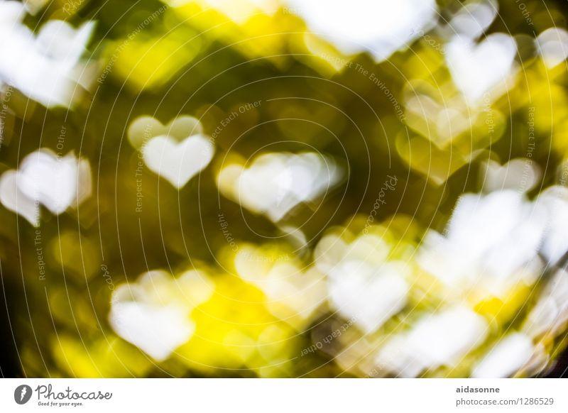 Green Beautiful Yellow Fantastic Heart Soft Kitsch