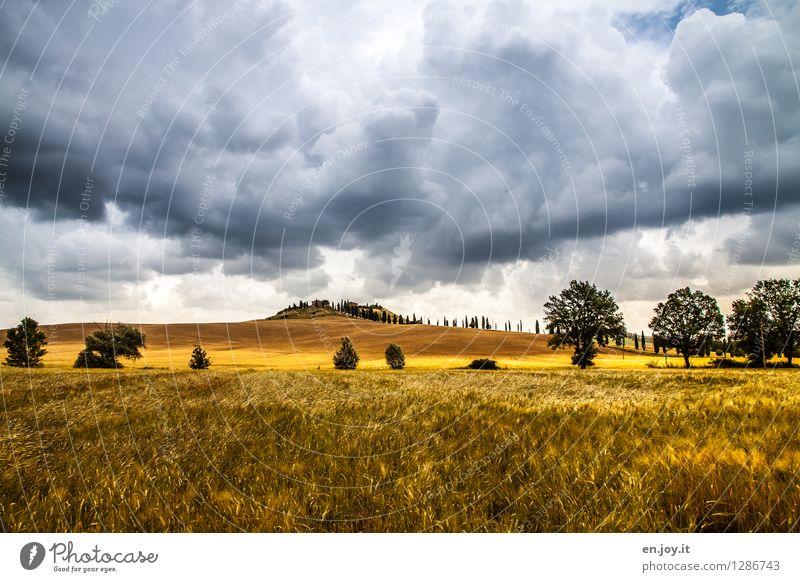 Sky Nature Vacation & Travel Summer Landscape Clouds Far-off places Dark Autumn Horizon Weather Field Climate Threat Italy Hill