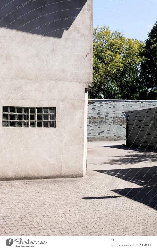 backyard Cloudless sky Beautiful weather tree Deserted House (Residential Structure) Places built Architecture Garage Wall (barrier) Wall (building) Window