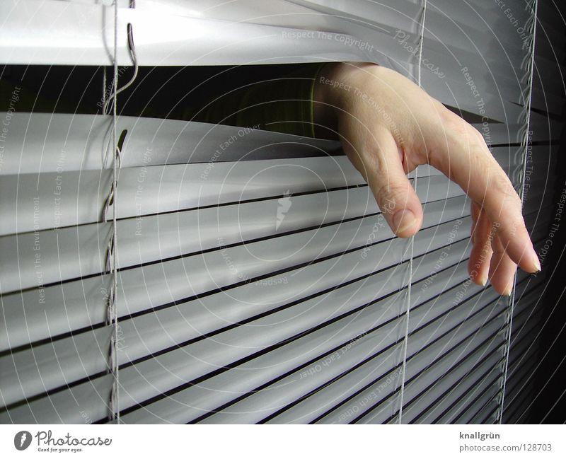 Woman Hand Dark Bright Metal Fingers Forwards Silver Backwards Aluminium Venetian blinds Disk Droop