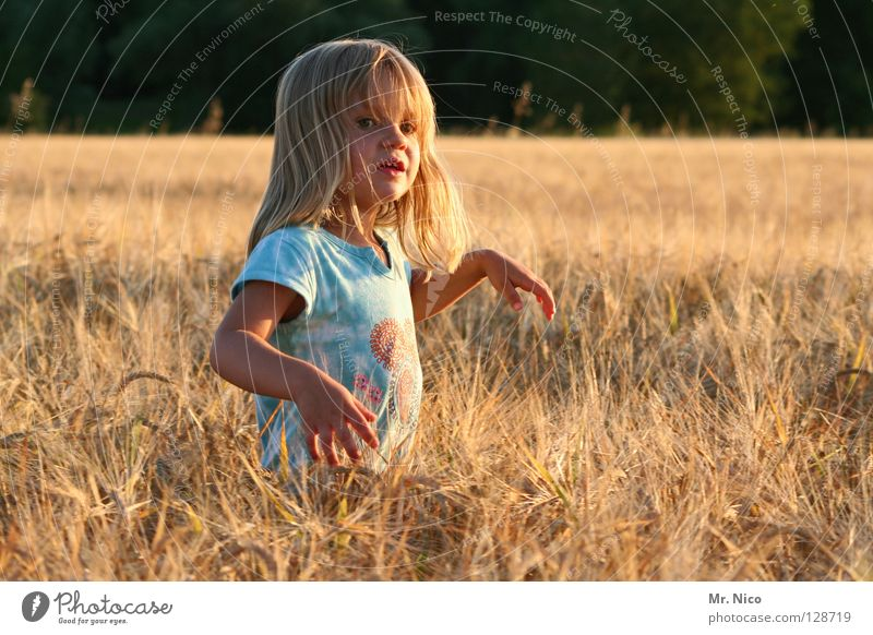 Child Beautiful Summer Hand Girl Far-off places Warmth Bright Field Blonde Stand Beautiful weather Cute Soft T-shirt Posture