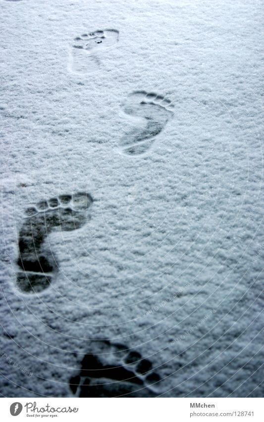 Homo Sapiens Footprint Barefoot Cold Freeze Extract Forwards March Hiking Pursue Winter White Shoot Impression Animal tracks In transit Poverty Toes 5 10 15 20