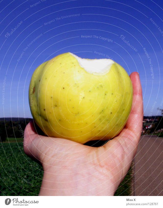big apple Colour photo Exterior shot Day Fruit Apple Nutrition Hand Sky Green apple green Harvest Bite Eating