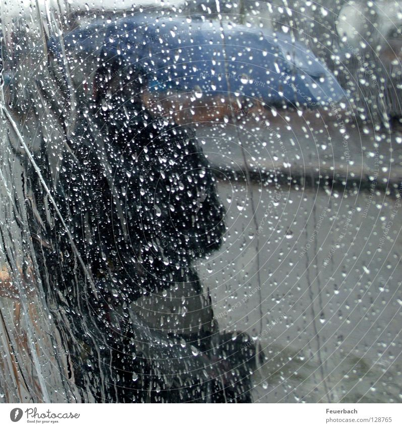 Human being Water Blue Street Cold Autumn Gray Spring Rain Weather Wind Wet Drops of water Climate Protection Umbrella