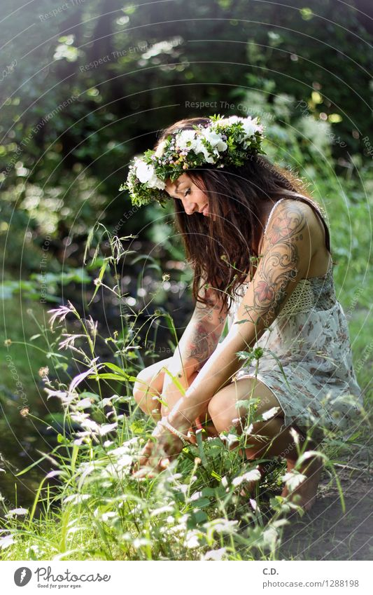 forest fairy Young woman Youth (Young adults) 18 - 30 years Adults Environment Nature Grass Bushes Forest Dress Brunette Long-haired Friendliness Happiness