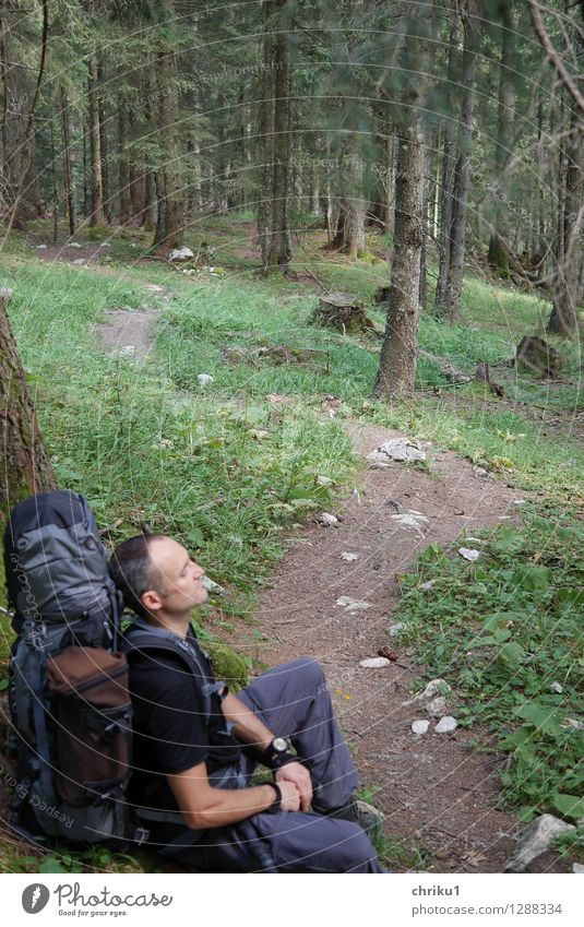 Rest(Place) Human being Masculine 1 30 - 45 years Adults Nature Plant Animal Forest Lanes & trails Relaxation Sit Hiking Blue Brown Green Caution Patient Calm