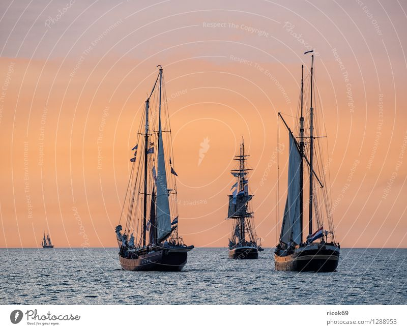 Vacation & Travel Water Relaxation Red Clouds Yellow Tourism Idyll Romance Baltic Sea Navigation Sailing Maritime Sailing ship Rostock