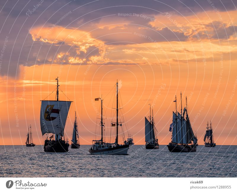 Sailing ships on the Hansesail Relaxation Vacation & Travel Tourism Water Clouds Baltic Sea Navigation Maritime Yellow Red Romance Idyll Kitsch Hanse Sail