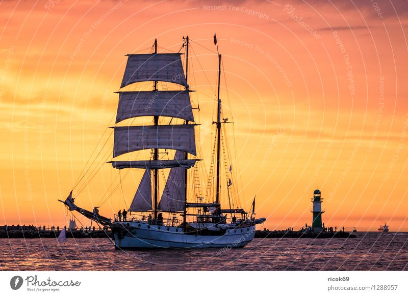 Sailing ship on the Hansesail Relaxation Vacation & Travel Tourism Water Clouds Baltic Sea Lighthouse Navigation Maritime Yellow Red Romance Adventure Idyll