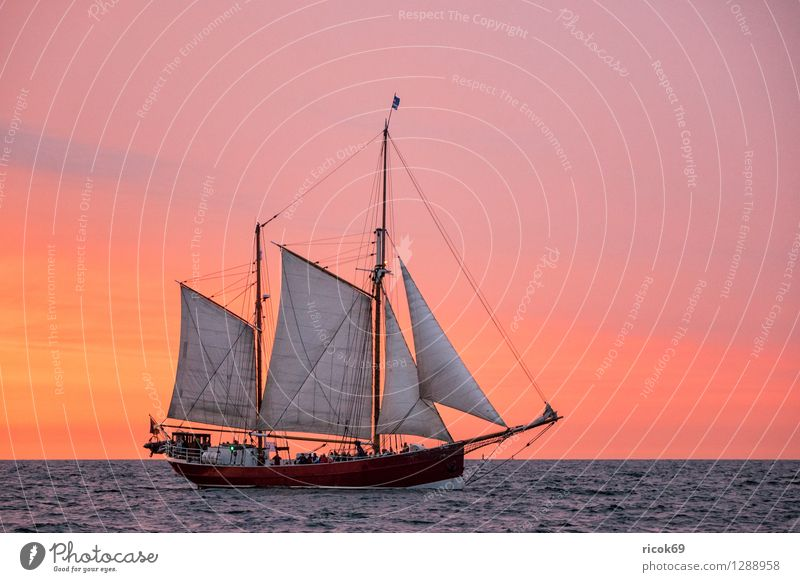 Sailing ship on the Hansesail Relaxation Vacation & Travel Tourism Water Clouds Baltic Sea Navigation Maritime Yellow Red Romance Idyll Hanse Sail Windjammer