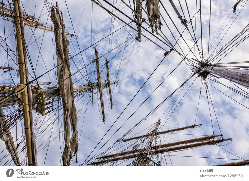 Sailing ship on the Hansesail Relaxation Vacation & Travel Tourism Clouds Baltic Sea Navigation Maritime Romance Idyll Hanse Sail Windjammer Rigging mast