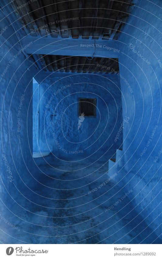 Blue in space Africa Old House (Residential Structure) Architecture Wood Room Wall (building) Stairs Entrance Colour Whimsical Morocco Chechaouen Fairy tale