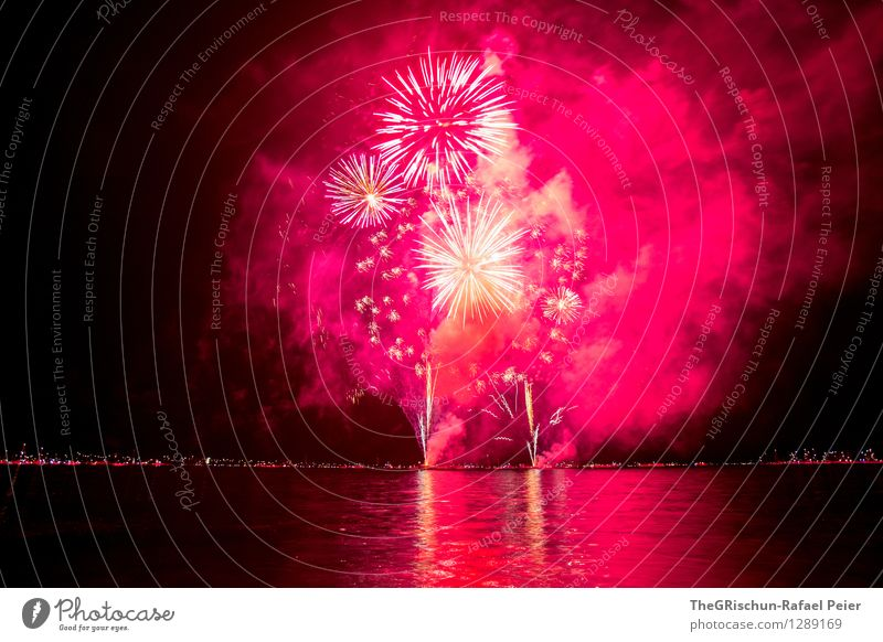 fireworks Art Artist Work of art Stage play Violet Pink Red Black Silver White Lake Water Reflection star-shaped Smoke Sulphur Fire Firm Feasts & Celebrations