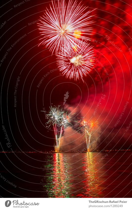 fireworks Art Artist Work of art Stage play Yellow Gold Gray Orange Pink Red Black White Fire Firecracker To enjoy Fantastic Inspiration Long exposure Explosion
