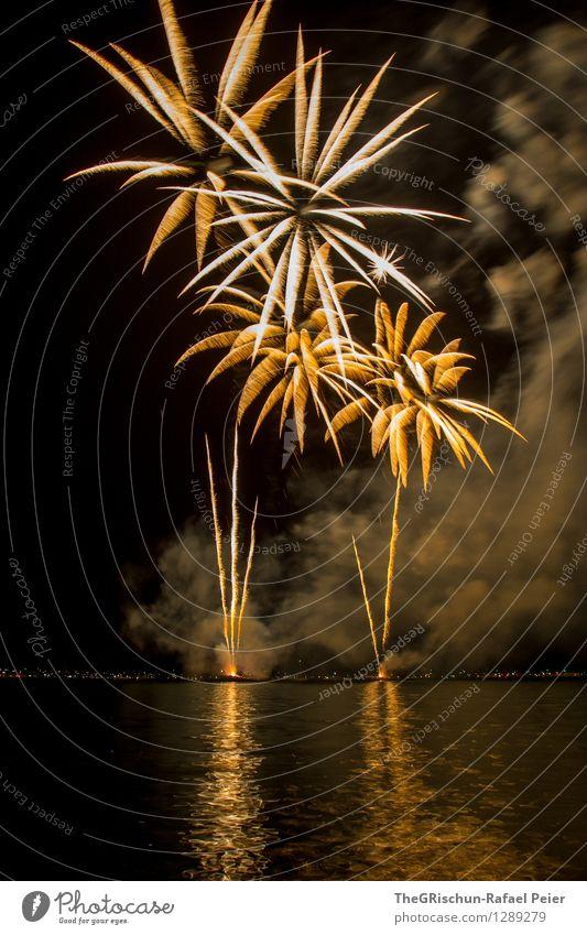 fireworks Art Artist Work of art Stage play Yellow Gold Orange Black Silver White Firecracker Smoke Palm tree Ignite Rocket Dirty Water Reflection Light Lake
