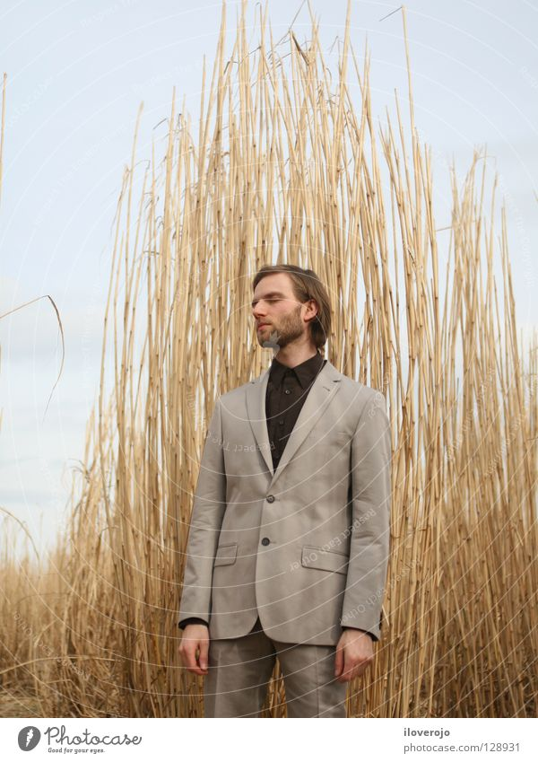 suit 01 Man Field Cornfield Suit Men's fashion Gray Facial hair Thin Chic Masculine Closed eyes Rye Barley Wheat Exterior shot Portrait photograph Clothing