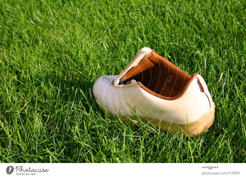 ...just abandoned! Footwear Grass Meadow Shoe sole Going Lose Search Find Leisure and hobbies resene zipper
