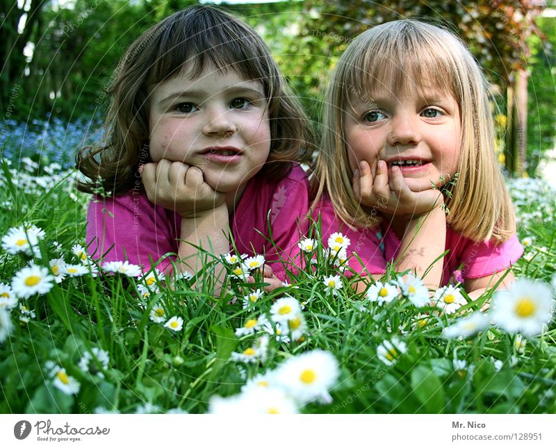 grin cheeks Headrest Friendship Appearance Summery Girl 2 Cute pretty Blonde Dark-haired Grinning Happiness Contentment Meadow Daisy Goof off Innocent
