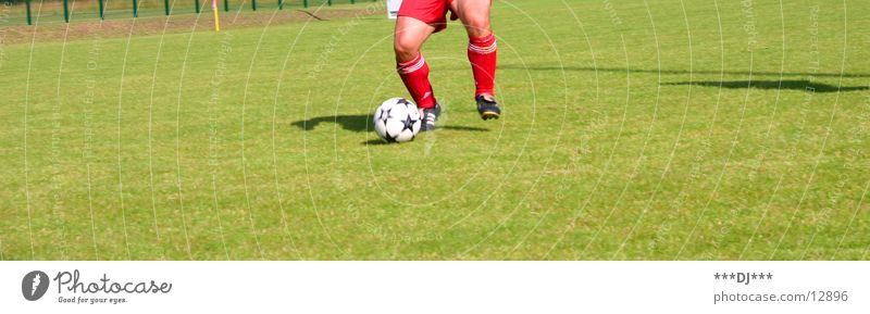 Sports Grass Soccer Places Ball Lawn Gate Shoot Be suitable Dribble