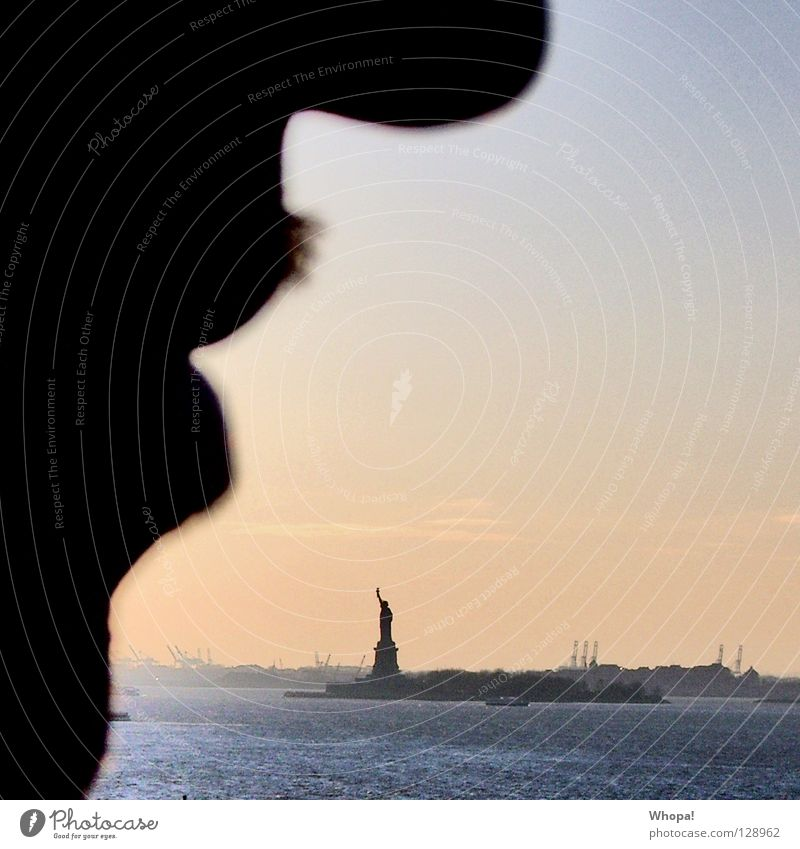 Man Water Freedom Mouth Nose USA Romance Facial hair New York City Statue of Liberty Brooklyn