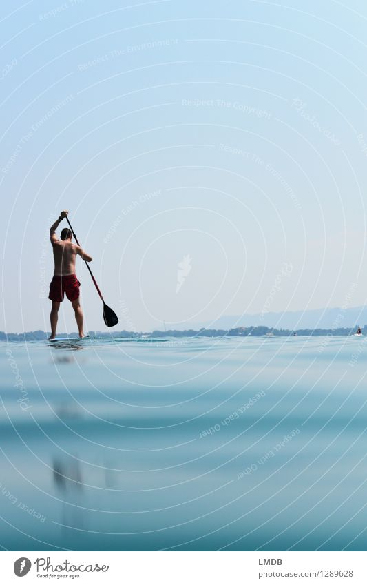 stand-up paddling Leisure and hobbies Vacation & Travel Summer Summer vacation Sports Fitness Sports Training Human being Masculine Man Adults 1 Athletic Blue