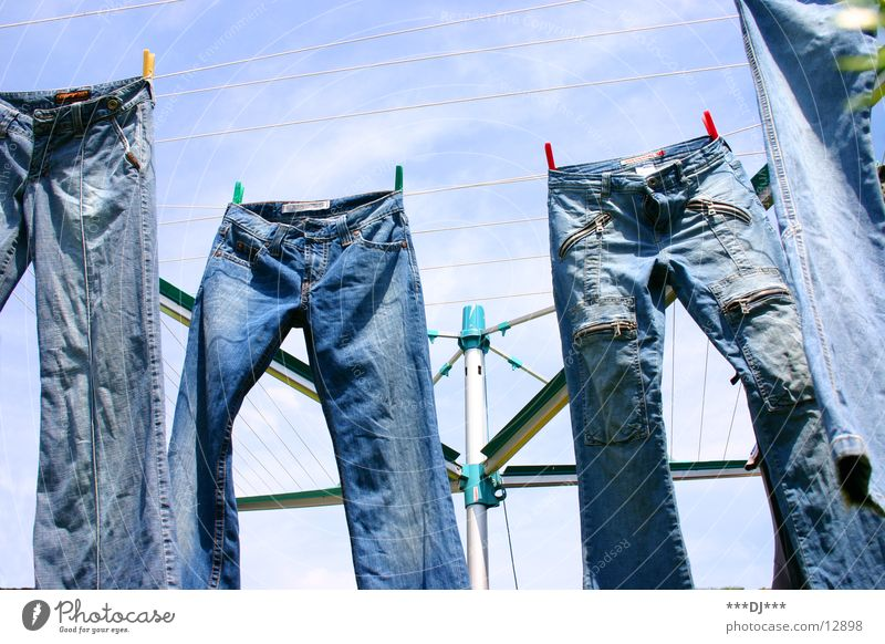 hanging pants Pants Laundry Hang Dry Clothesline Spider Leisure and hobbies Jeans Sky Blue denim Washing Washing day