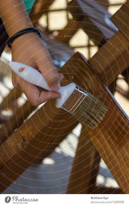 Apply wood preservative Design Home improvement Garden Redecorate Furniture Chair Work and employment Craftsperson Gardening Human being Masculine Hand 1