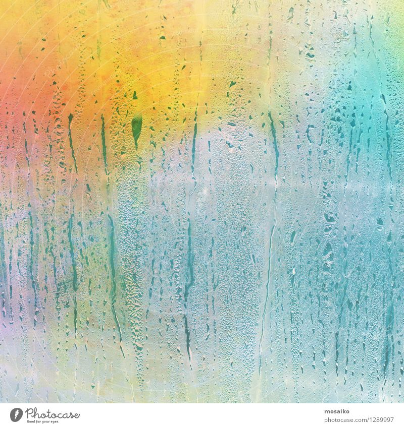 Colour Summer Water Joy Window Autumn Funny Style Background picture Rain Glittering Design Happiness Drops of water To enjoy Wet