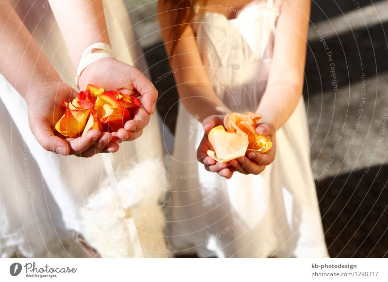 Girls with colorful flowers Wedding Human being Feminine Brothers and sisters Hand 2 3 - 8 years Child Infancy 8 - 13 years Event Flower Rose Tulip Bouquet Love