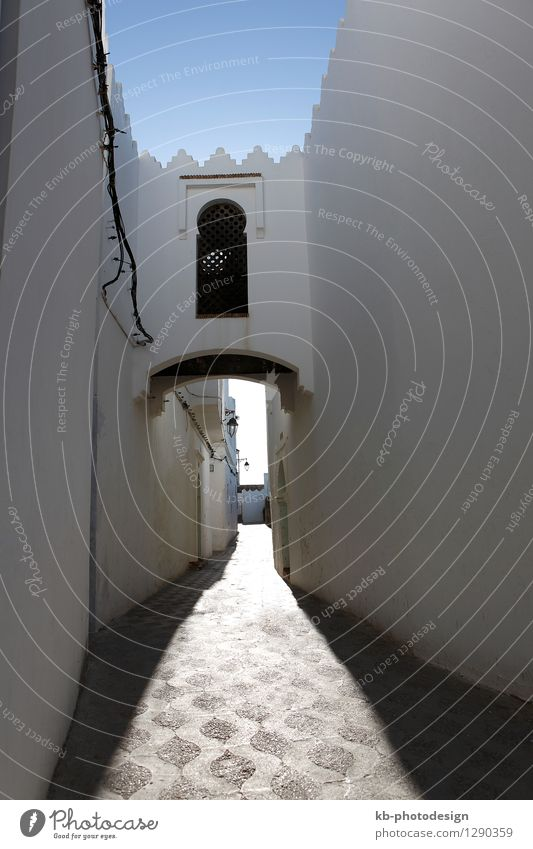 Narrow alley in Assila, Morocco Vacation & Travel Tourism Adventure Far-off places City trip Summer Summer vacation blue street door oriental old town Arabic