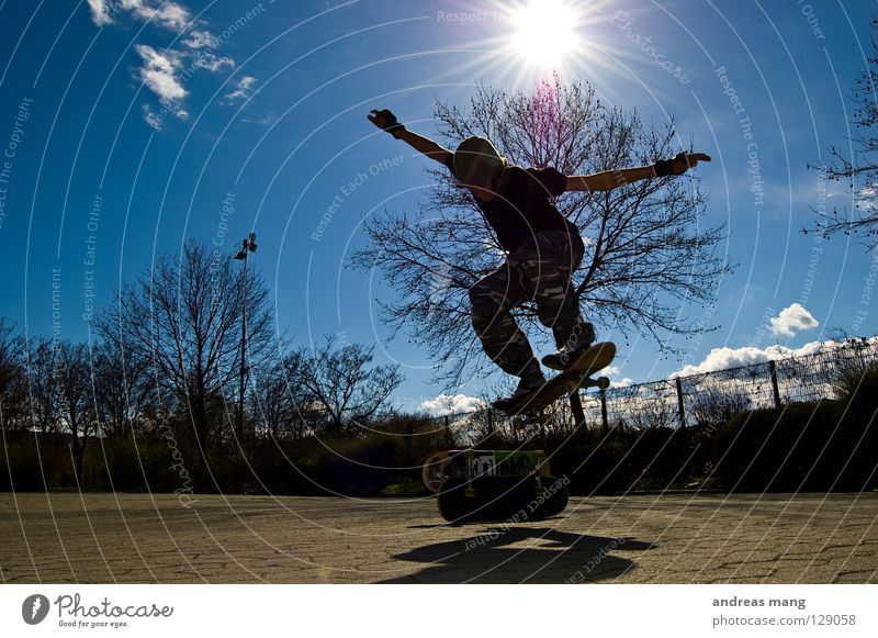 2 Decks Ollie Skateboarding Jump Style Action Extreme Sky Tree Radiation Fence Parking lot Tall Extreme sports Coil Flying fly Sports blue trees Sun beam boy