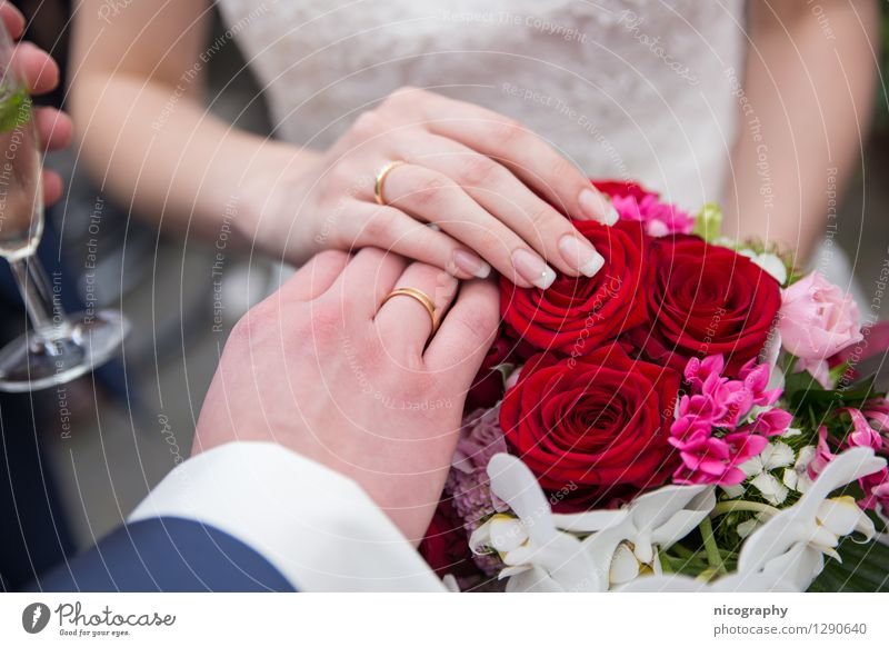 Human being Youth (Young adults) Young woman Flower Hand Young man 18 - 30 years Adults Love Happy Feasts & Celebrations Fashion Couple Glass Arm Fingers