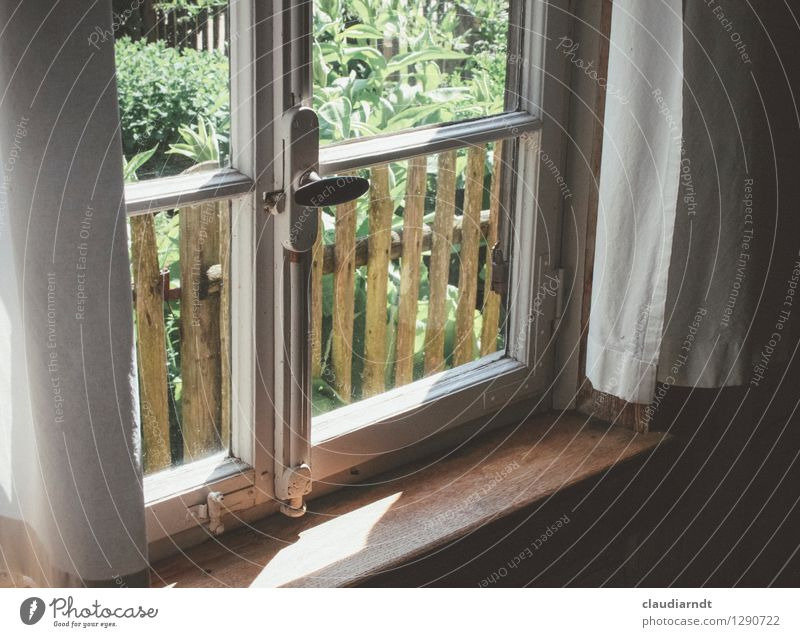 summer day Village House (Residential Structure) Garden Window Old Historic Beautiful Warmth Safety (feeling of) Curtain Garden fence Lattice window