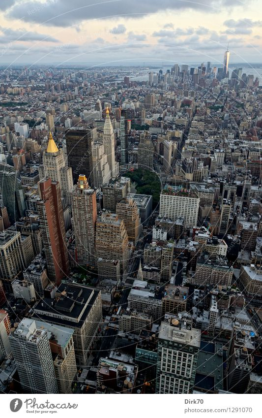 Cutting through Manhattan Vacation & Travel Tourism Far-off places Sightseeing City trip Business Advancement Future Clouds Horizon Summer Beautiful weather