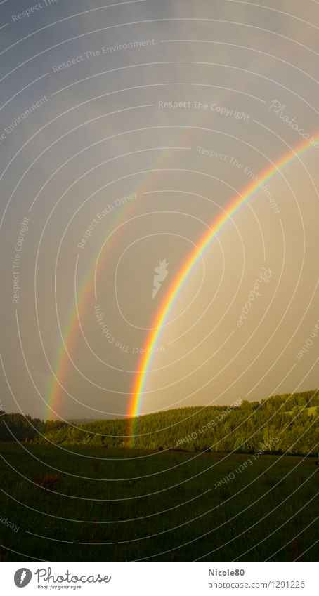Illuminated advertising in the sky Sky Storm clouds Weather Happy Rainbow Double exposure Light (Natural Phenomenon) Meadow Forest Transience gold pot Esthetic