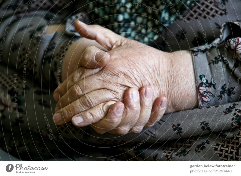 old hands Human being Feminine Woman Adults Female senior Grandmother Hand 1 60 years and older Senior citizen Old Soft Gray Loyalty Help Responsibility
