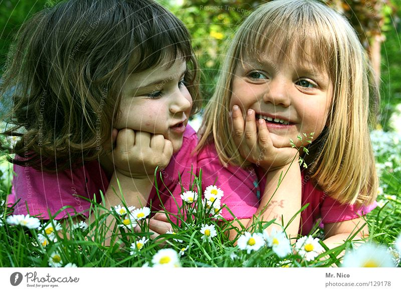 Child Green Beautiful White Relaxation Flower Hand Joy Girl Face Yellow Meadow Happy Couple Friendship Pink