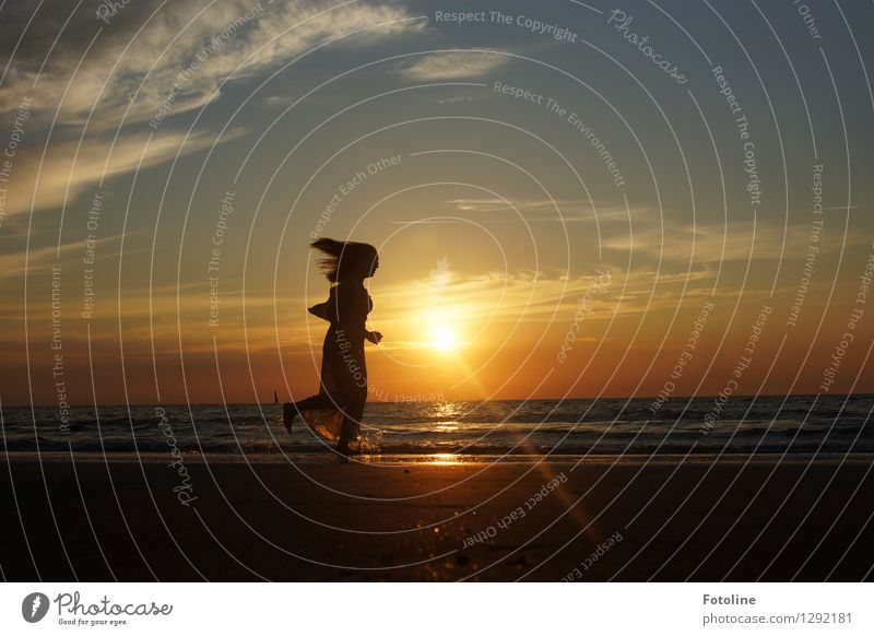 Before the sun is gone! Human being Feminine Young woman Youth (Young adults) 1 Environment Nature Landscape Sky Clouds Summer Beautiful weather Coast Beach