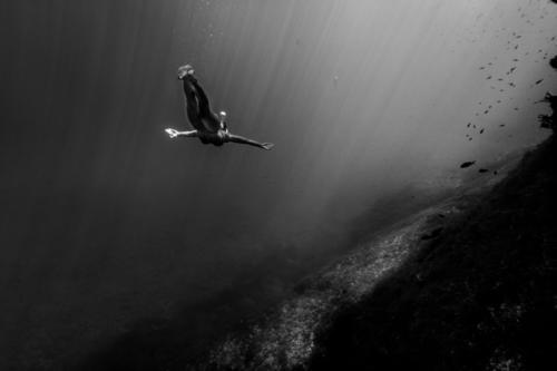 Woman diving in underwater landscape Human being Nature Youth (Young adults) Beautiful Water Young woman Relaxation Ocean Landscape Healthy Eating Calm Beach
