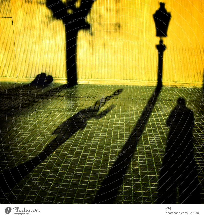 shadow Human being Wall (building) Yellow Gray Tree Lantern Light Kissing Embrace Town Going Traffic infrastructure Shadow Couple street green grey Contrast Sun