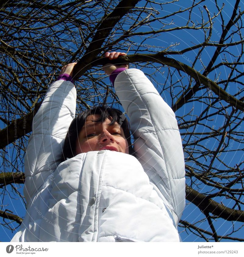Women want to go high! Woman Tree Jacket Winter March To hold on Black White Hang Joy Sky Tall Branch Climbing Hair and hairstyles Blue Laughter Exterior shot