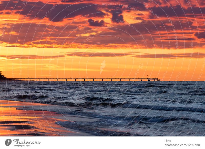 Elementary Beach Baltic Sea Maritime Ocean Sky Sunset Sea bridge Usedom