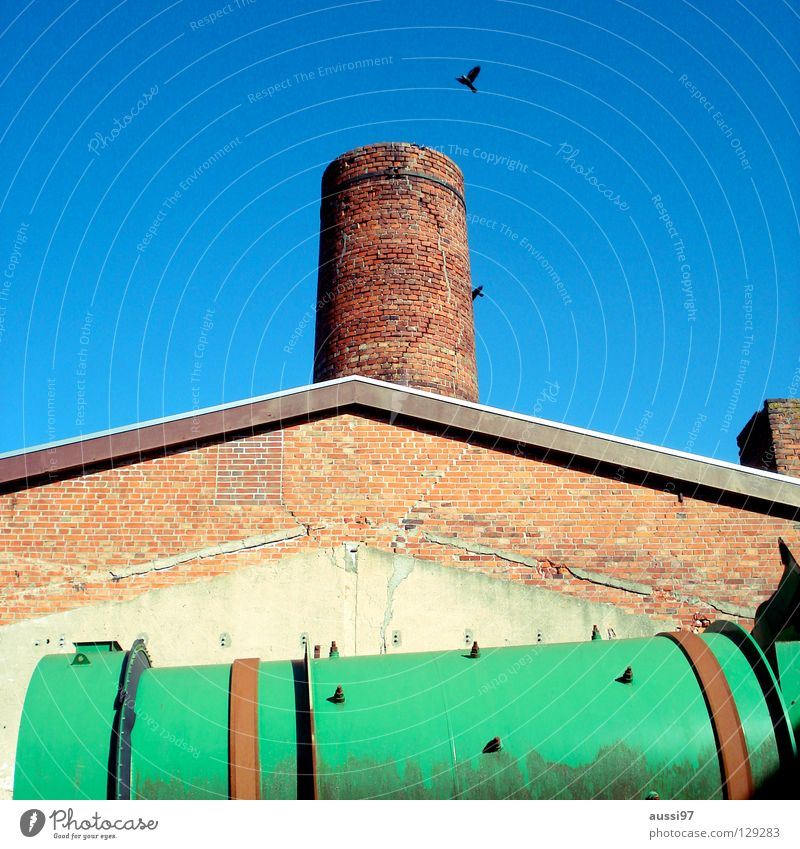 rook Industrial heritage Play of colours Green trash can Masonry Rook Crow Industry Historic industrial romance Chimney stonewalled Burn