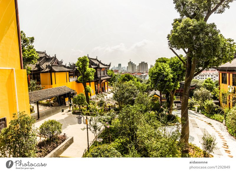 View from the temple Town Populated House (Residential Structure) Church Building Architecture Roof Tourist Attraction Peace Infinity Luxury Living or residing